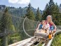 Alpine-Coaster_2_reference